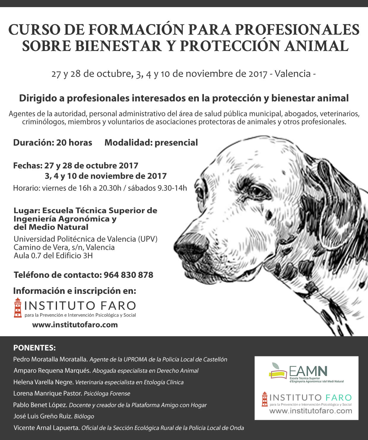 proteccion animal valencia